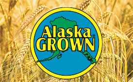 alaska grown wheat