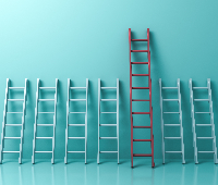 picture of ladders, one taller than the rest