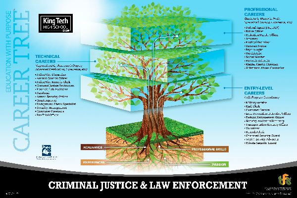 Criminal Justice career tree