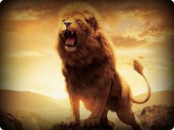 lions-roaring-wallpaper-1-250x187.jpg