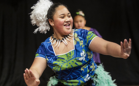 Creekside Park Elementary Celebrates Diversity at Multicultural Night