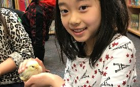 "Hatching ""egg-citement"" at Williwaw Elementary"