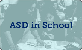 ASD in School: Traditional/Blended Model