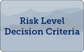 Risk Level Decision Criteria